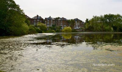 Explore the culture of Hampstead Heath